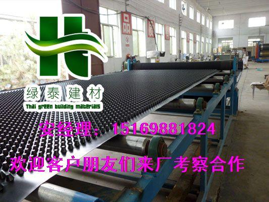 高密度#惠州HDPE车库种植排水板